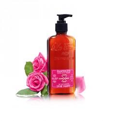 Shampoing Divin - Cheveux secs & fragilisés 200 ml